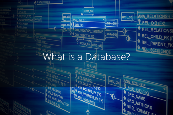 What_is_a_Database2